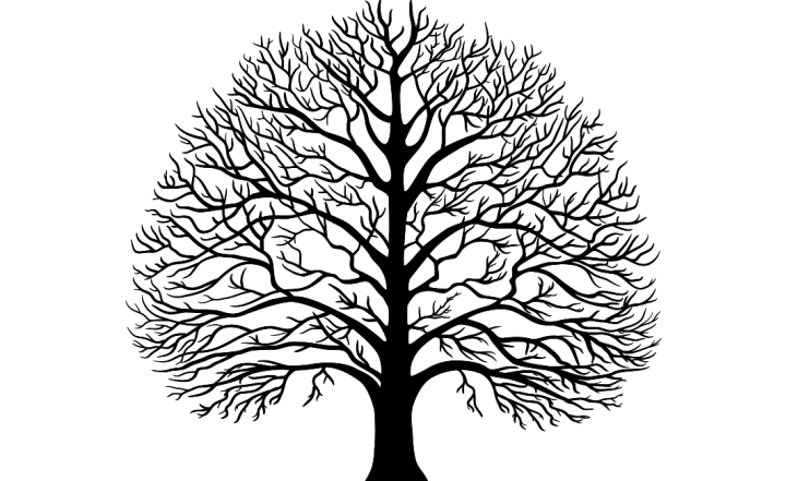 Трафареты деревьев своими руками шаблоны 441