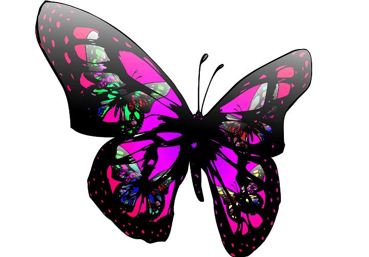 Купить Фотообои Цветы и бабочки на Wallphotoru