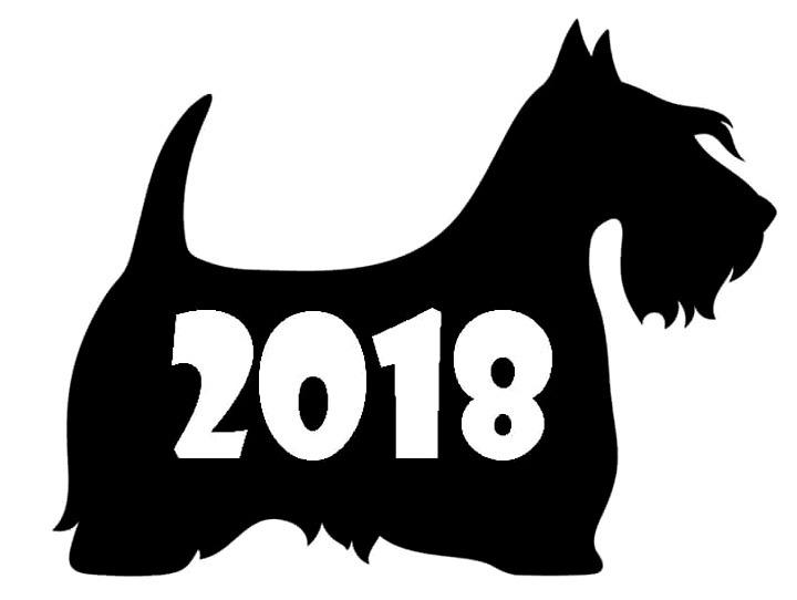 собака трафарет 2018