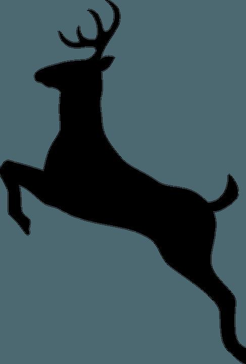 шаблон оленя