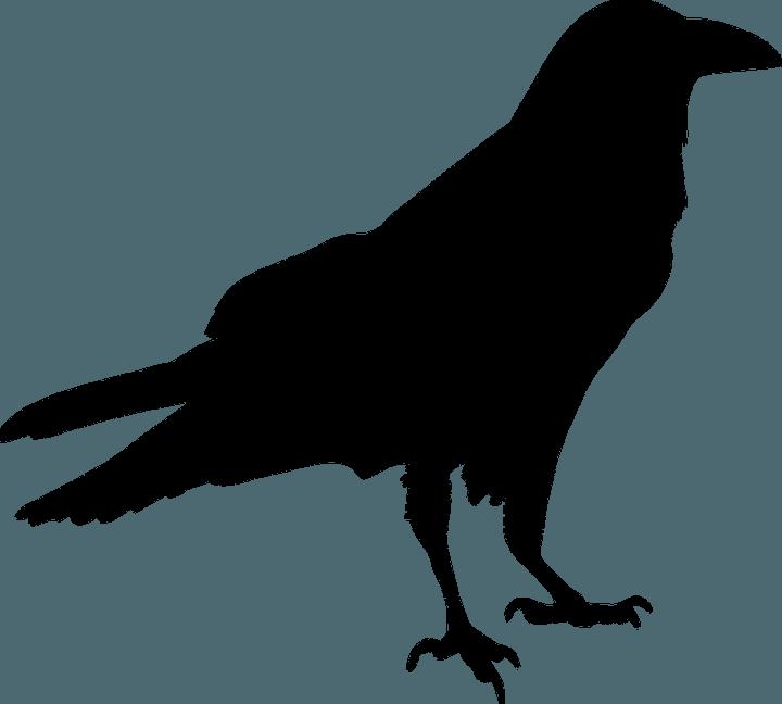 шаблон вороны