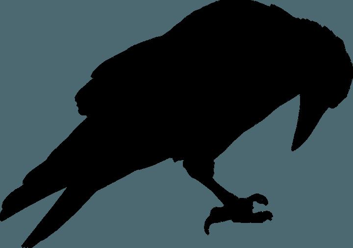 шаблон ворона