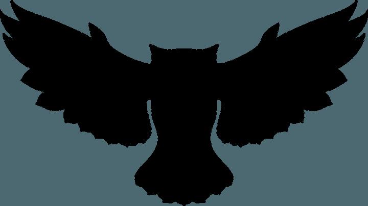 шаблон совы