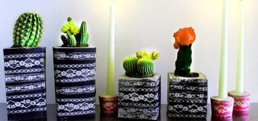 вазоны для кактусов