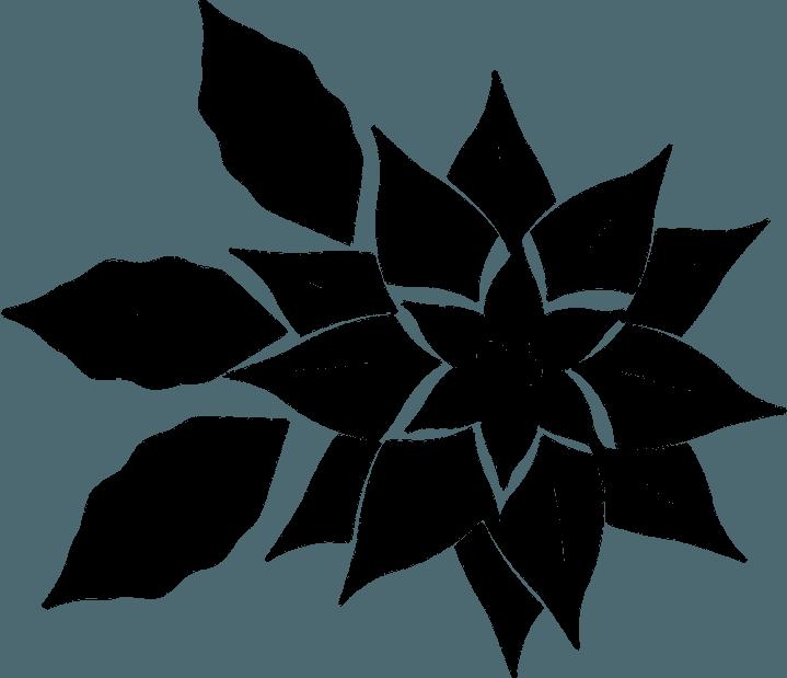 шаблон астры