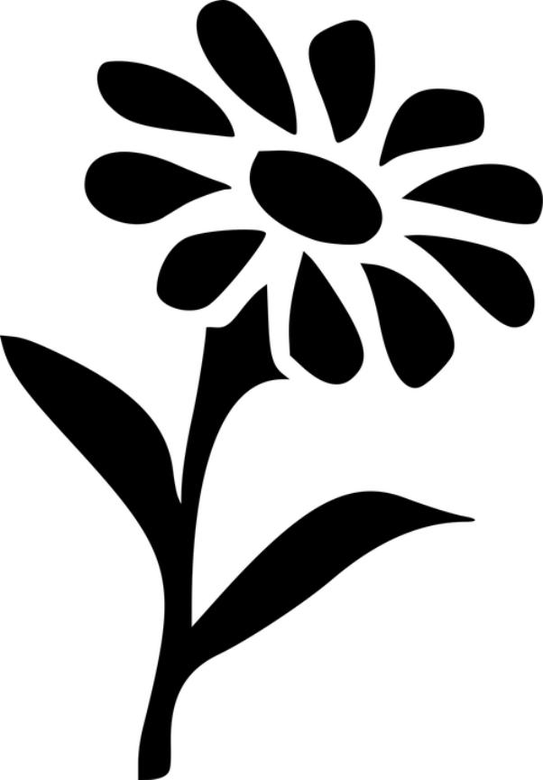 шаблон ромашки