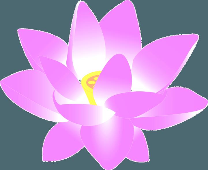 шаблон водяной лилии