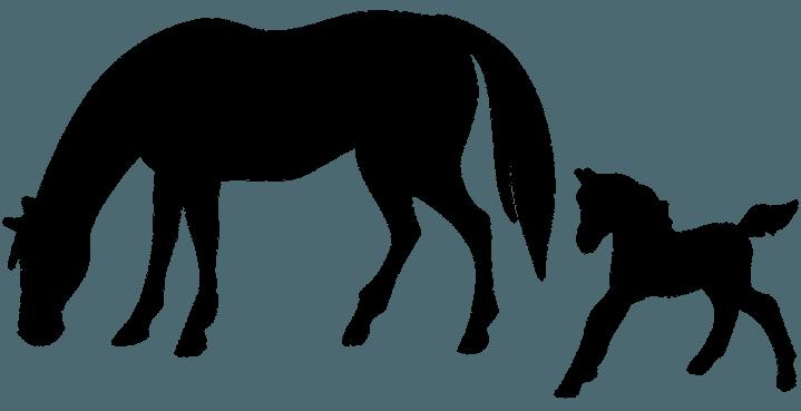 лошадки щаблон