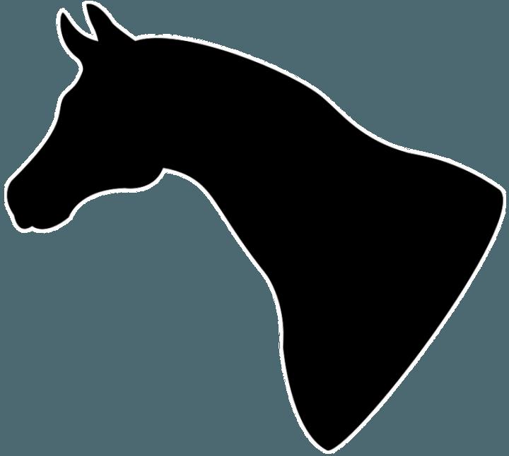 голова лошади шаблон