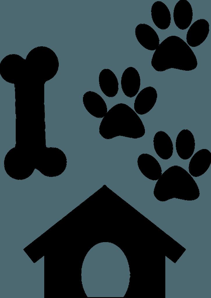 собачьи следы