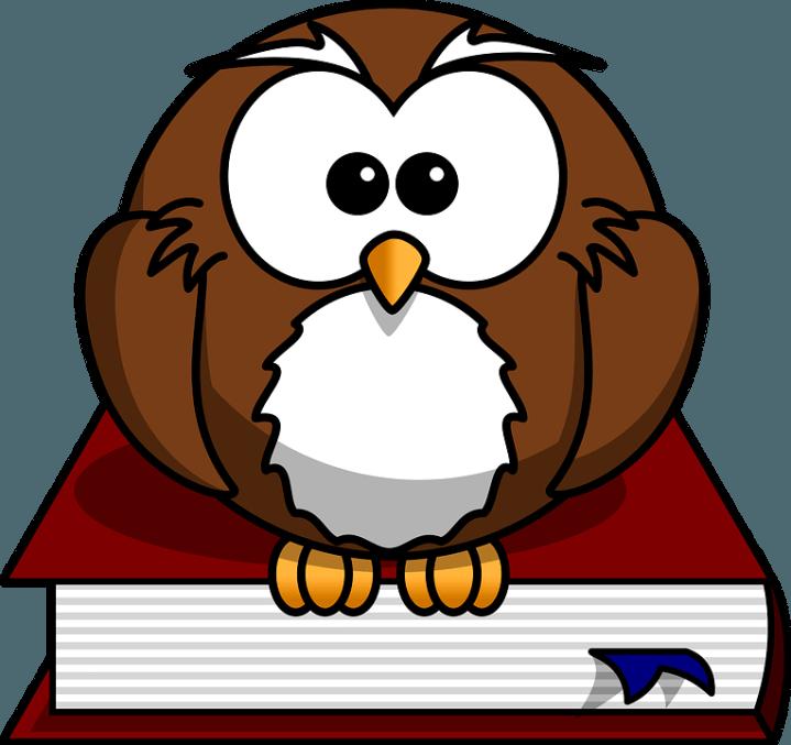 сова с книжкой