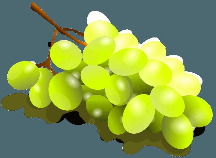 шаблон виноград