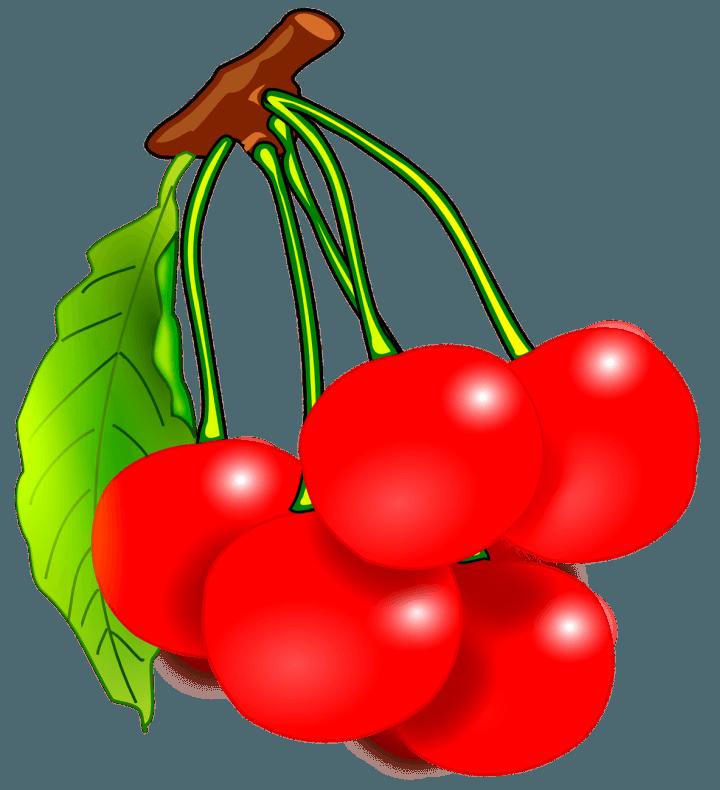 шаблон вишня
