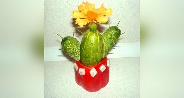 кактус из огурцов