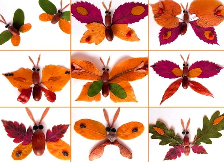 бабочка из желудя