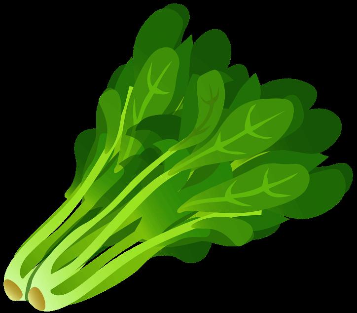 шаблон шпинат
