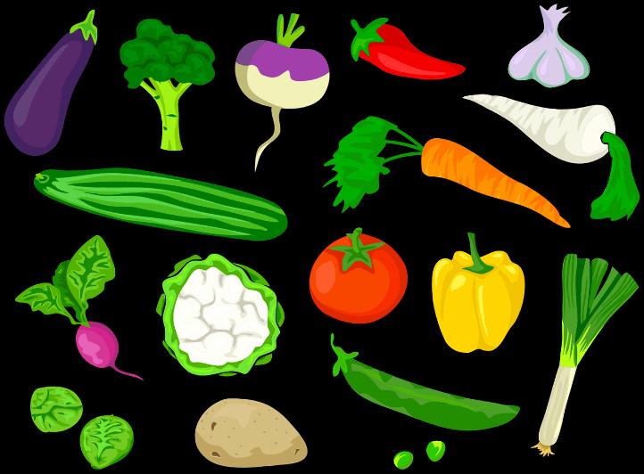 шаблоны овощей