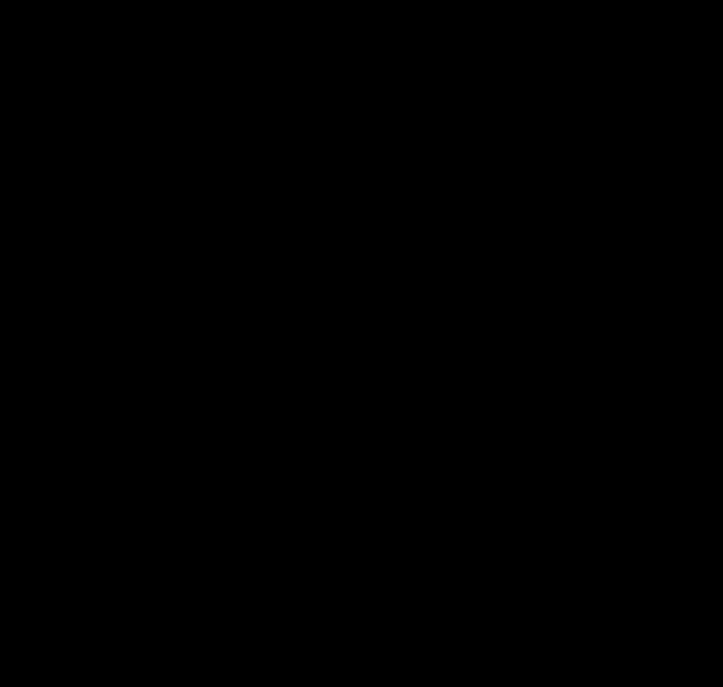шаблон цветочная звезда