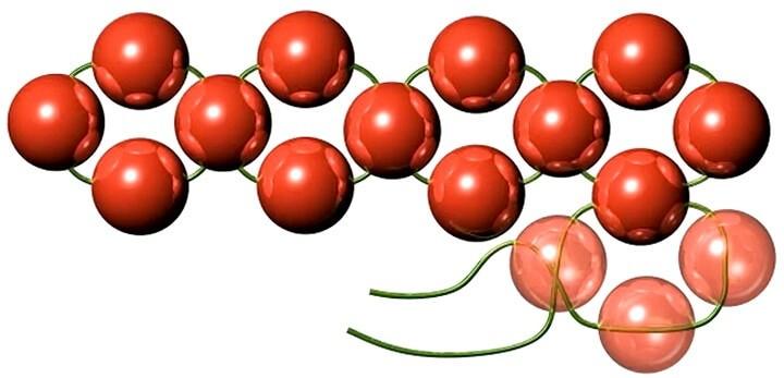 птеление цветком