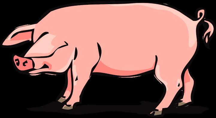 шаблон свинья