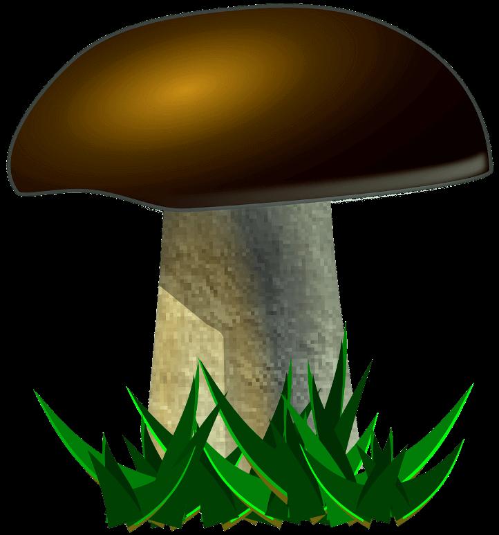 шаблон гриб