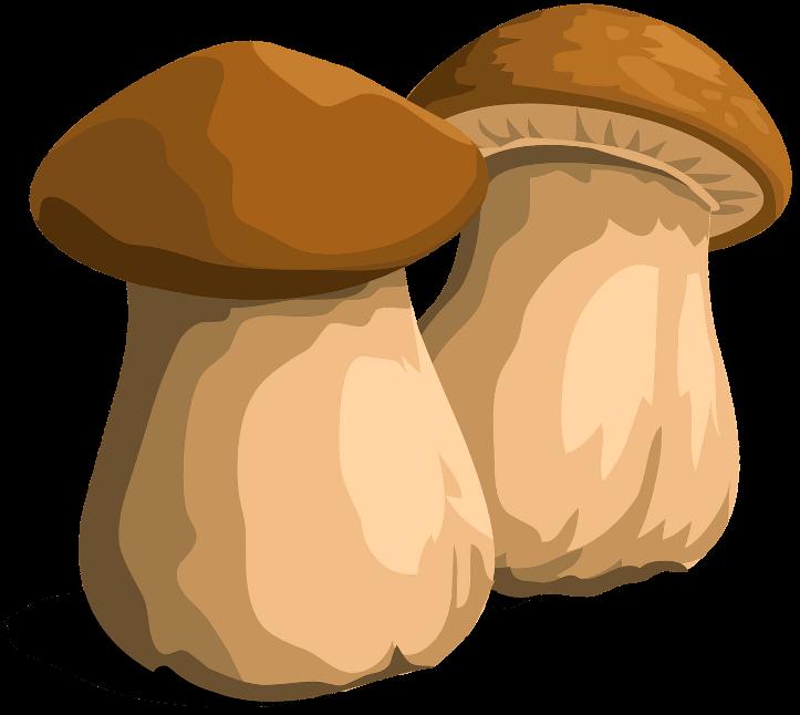 шаблон грибочки