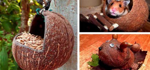 поделки из кокосов