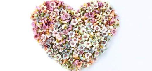 цветы на 8 марта aliexpress